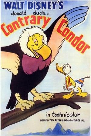 L'Œuf du Condor Géant