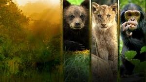 Ver Growing Up Animal online y en castellano 2021