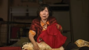 Lucky Grandma – lektor ivo