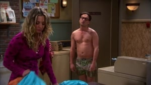 The Big Bang Theory: 5×22