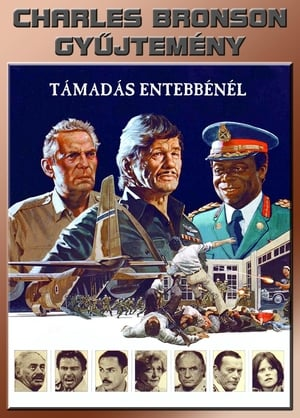 Támadás Entebbe-nél