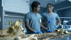 Coroner Season 1 Episode 5