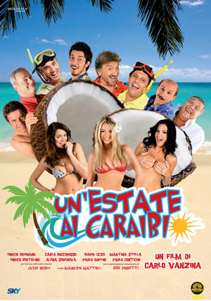 Un'estate ai Caraibi (2009)