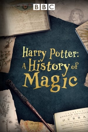 Harry Potter: A History Of Magic-Azwaad Movie Database