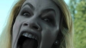 Grimm sezonul 1 episodul 20