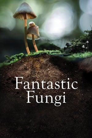 Fantastic Fungi-Brie Larson