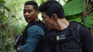 Hawaii Five-0 Season 10 :Episode 8  Ne'e aku, ne'e mai ke one o Punahoa (That way and this way shifts the sands of Punahoa)