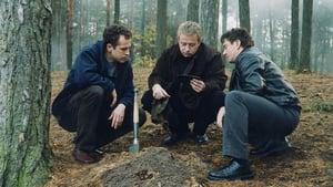 Sfora: Bez litości (2002)