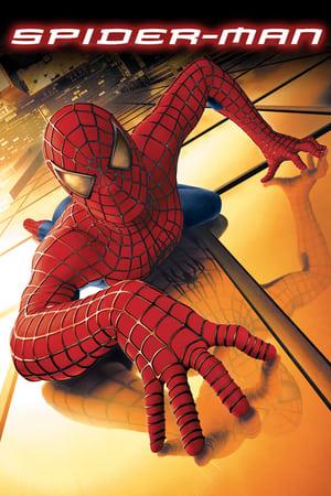 Homem-Aranha Torrent, Download, movie, filme, poster