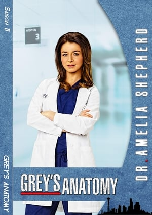 Grey's Anatomy Saison 12 Épisode 10