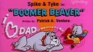 Boomer Beaver