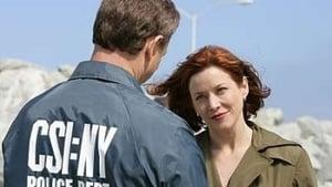 CSI: Kryminalne zagadki Nowego Jorku: 4×17