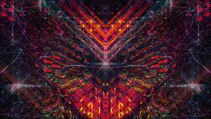 Bufo Alvarius – The Underground Secret