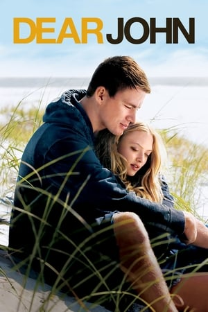 Dear John (2010) is one of the best movies like Movies About 9/11 Twin Towers