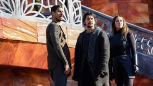 The 100: 6×13