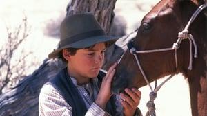 Luckys große Abenteuer (1999)