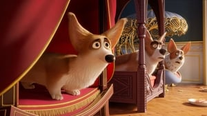 Assistir Corgi: Top Dog Online Dublado e Legendado