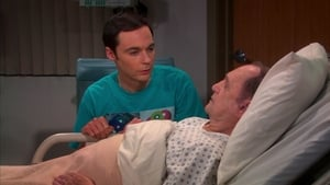 The Big Bang Theory Season 6 Episode 22 Watch Online