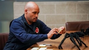 Chicago Fire: 7×6