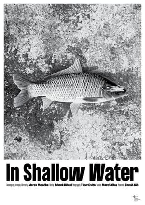 In Shallow Water