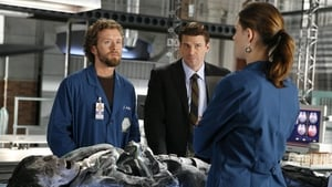 Bones Season 1 :Episode 6  The Man in the Wall