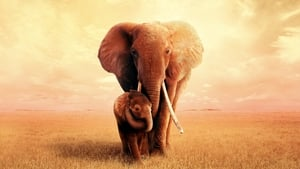 The Elephant Queen (2019) Hollywood Full Movie Watch Online Free Download HD