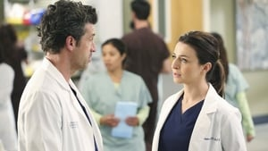 Grey's Anatomy Season 11 :Episode 7  Could We Start Again, Please?