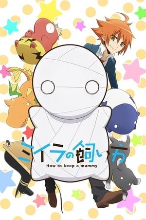 Miira no Kaikata Online