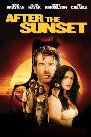 After the Sunset-Pierce Brosnan