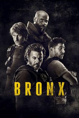 Image Bronx