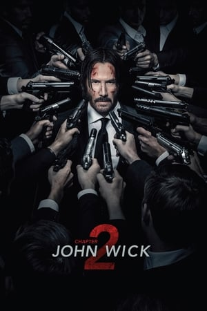 John Wick: Chapter 2 (2017) is one of the best movies like Chappie (2015)