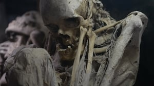 Secrets of the Dead: 13×3