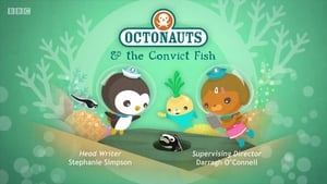 The Octonauts: Season 4 Episode 9