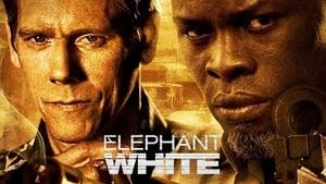 Elephant White [2011]