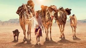 Tracks – Διασχίζοντας την έρημο