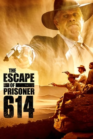A Fuga do Prisioneiro 614 Torrent, Download, movie, filme, poster