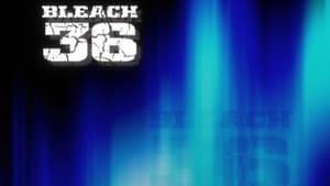 Bleach: 1×36