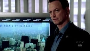 CSI: Nova York: 2×20