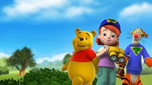 Mes amis Tigrou et Winnie Streaming Dvix
