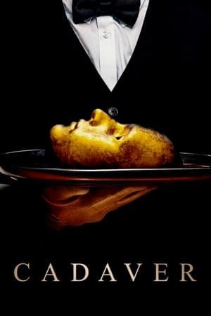 Image Cadaver