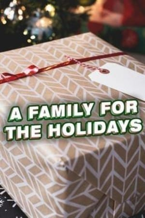 A Family for the Holidays (2017)