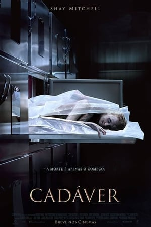 Cadáver Torrent, Download, movie, filme, poster