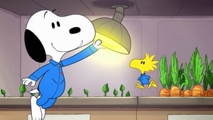 Snoopy In Space: 1×5