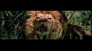 Roar (2015) English Full Movie Watch Online Free Download