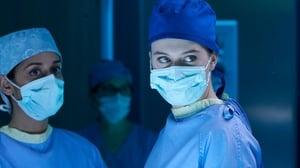 Nurses: 1×5