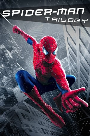 Poster Spider-Man trilogy (2002)