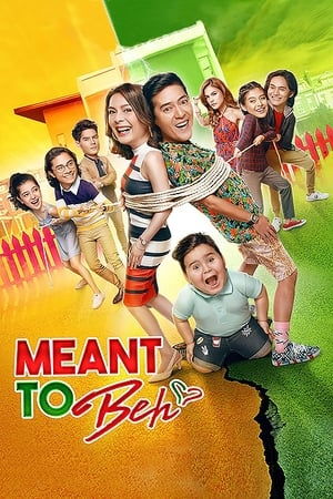 Meant to Beh poster