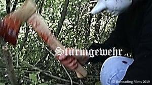 Sturmgewehr (2019)
