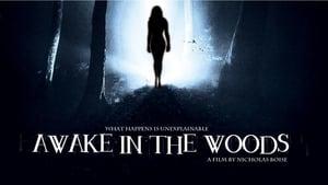 Awake In The Woods (2015)