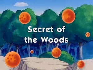 HD series online Dragon Ball Season 9 Episode 6 Secret of the Woods